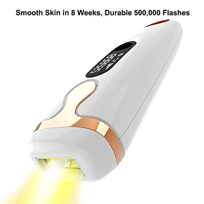 煙一致遺棄されたレーザー脱毛器具全身用光子脱毛器脱毛よりもプライベートな部分500,000光脱毛器具
