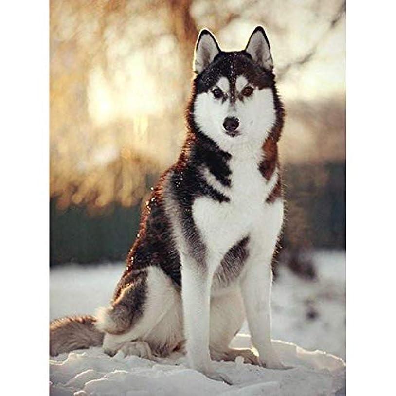 ミキサー可能教育するZDDYX デジタル番号付き顔料塗装 ハスキー犬の絵の絵は、家の装飾ができます