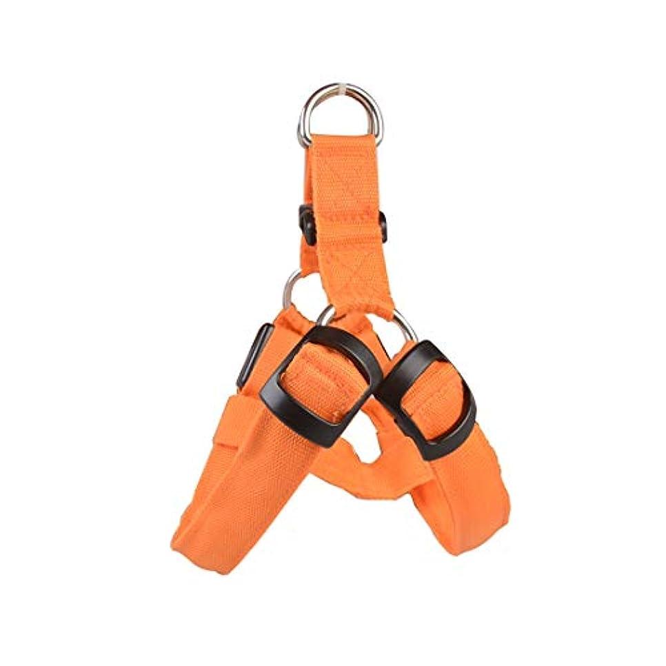 持続的バンガロー段階YULINGTRADE クールペット用品LEDライト ドッグ チェスト ストラップ中?大型犬発光犬の鎖犬のストラップ (色 : オレンジ, サイズ : M)