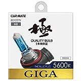 カーメイト 車用 ハロゲン ヘッドライト GIGA ザ・ブループラス H8 5600K 400lm BD1027N