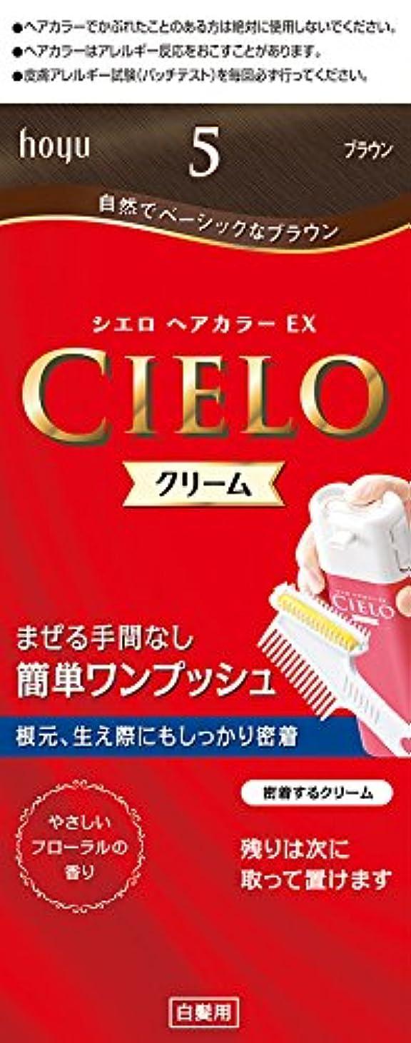 星補正説得力のあるホーユー シエロ ヘアカラーEX クリーム5 (ブラウン) 1剤40g+2剤40g+手袋+ブラシ付