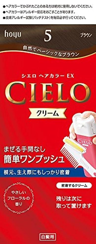 リーズメロン版ホーユー シエロ ヘアカラーEX クリーム5 (ブラウン) 1剤40g+2剤40g+手袋+ブラシ付