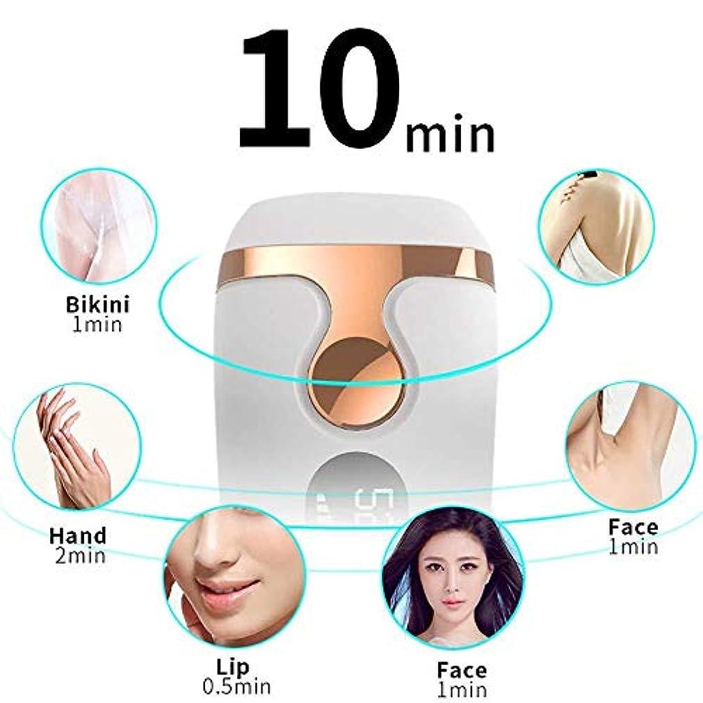 ロータリー変数分泌する女性の痛みのない永久脱毛、IPL脱毛器、パーマネント、500000フラッシュ、女性用ボディレッグビキニトリマー用脱毛機、ホワイト