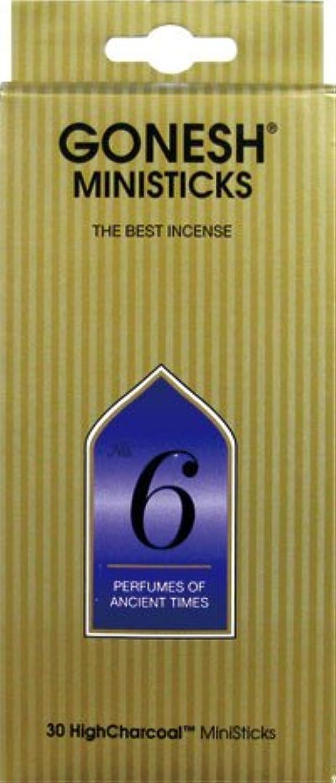 批評将来の収入GONESH ミニスティック NO.6 30本入 X 2個セット