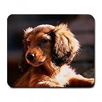 新しいミニチュアダックスフント子犬犬マウスパッドマットマウスパッドホットギフト