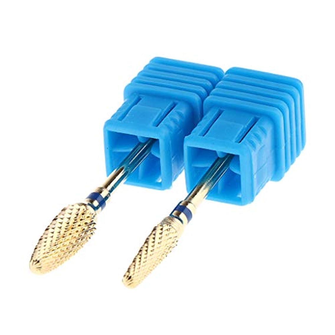 抵抗する紳士毎月Toygogo 2本の電気炭化物ネイルアートドリルファイルビットセットプロフェッショナルマニキュアドリルビット - 青