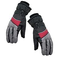 FLAMEER スノーボード グローブ 手袋 スポーツ用 ユニセックス 防水グローブ