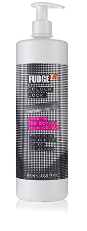 Colour Lock Conditioner (For Lasting Vibrancy & Colour Happy Hair)[並行輸入品]
