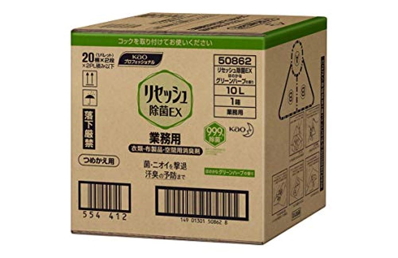 証明する飛行場民族主義リセッシュ除菌EX グリーンハーブの香り 10L バッグインボックスタイプ