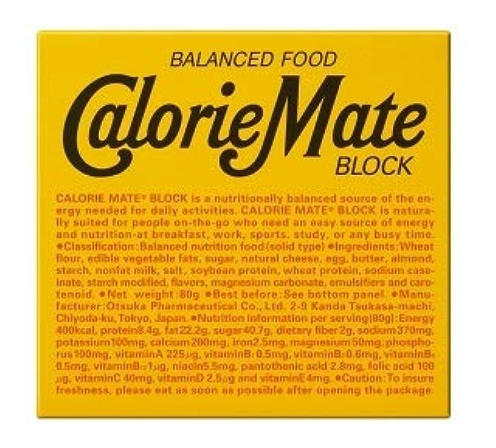 抗議神経障害合法大塚製薬 カロリーメイト ブロック チーズ味 4本入り【10個セット】