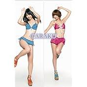 AKB48 TeamB 柏木由紀 篠田麻里子 抱き枕 カバー   2WAYトリコット    160*50cm
