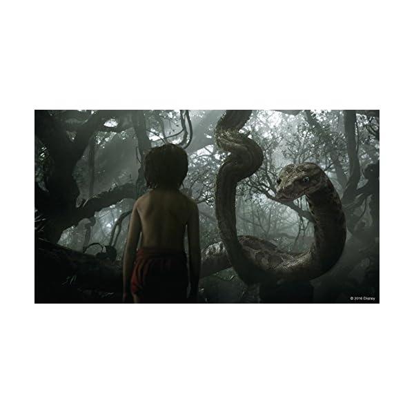ジャングル・ブック MovieNEX [ブルー...の紹介画像5