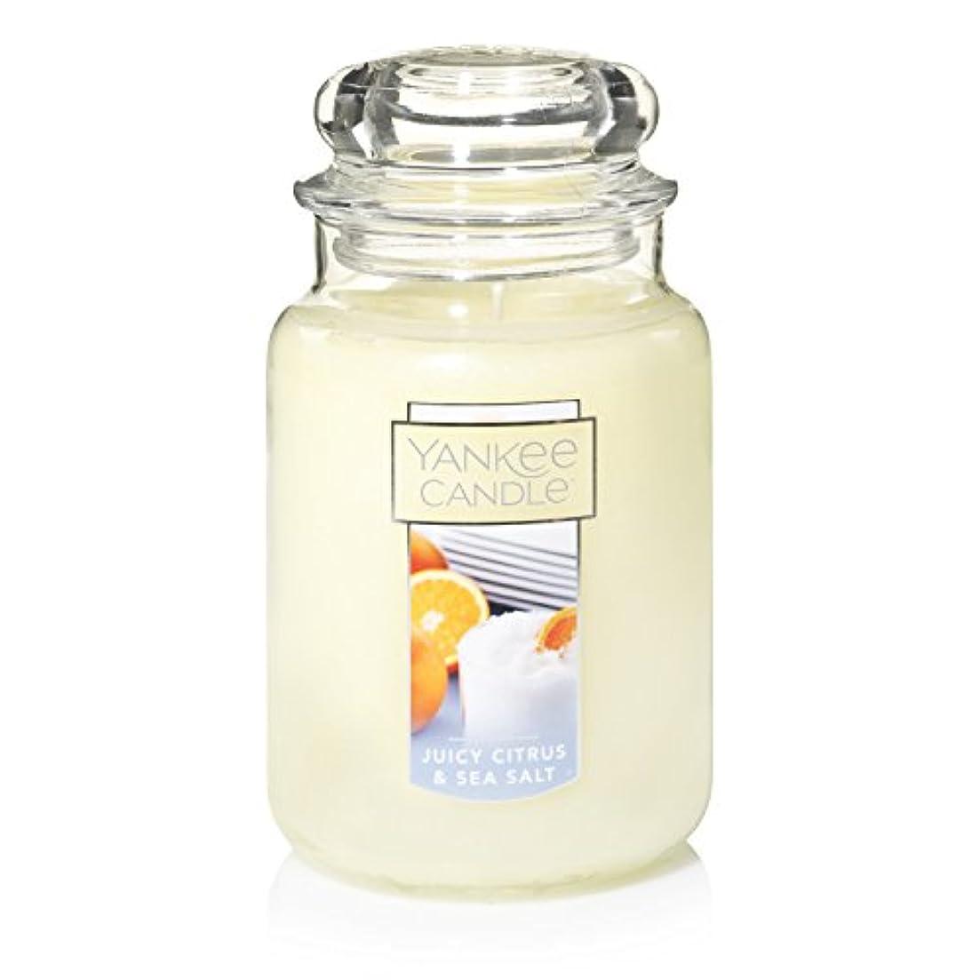 スケッチ建物自分Yankee Candle Juicy Citrus & Sea Salt Jar Candle, Large