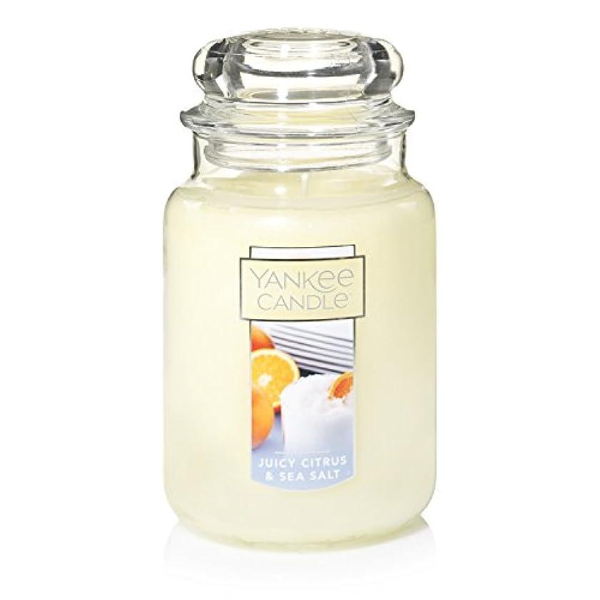 減衰専門用語自分の力ですべてをするYankee Candle Juicy Citrus & Sea Salt Jar Candle, Large