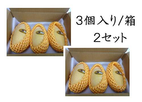 タイ産マンゴー ナムドクマイ種 1.2kg (2Lサイズ 3個セット)×2箱 当日発送の時もあります