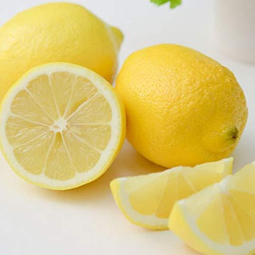 瀬戸内レモン 秀品 1kg 国産生レモン 贈答 お歳暮