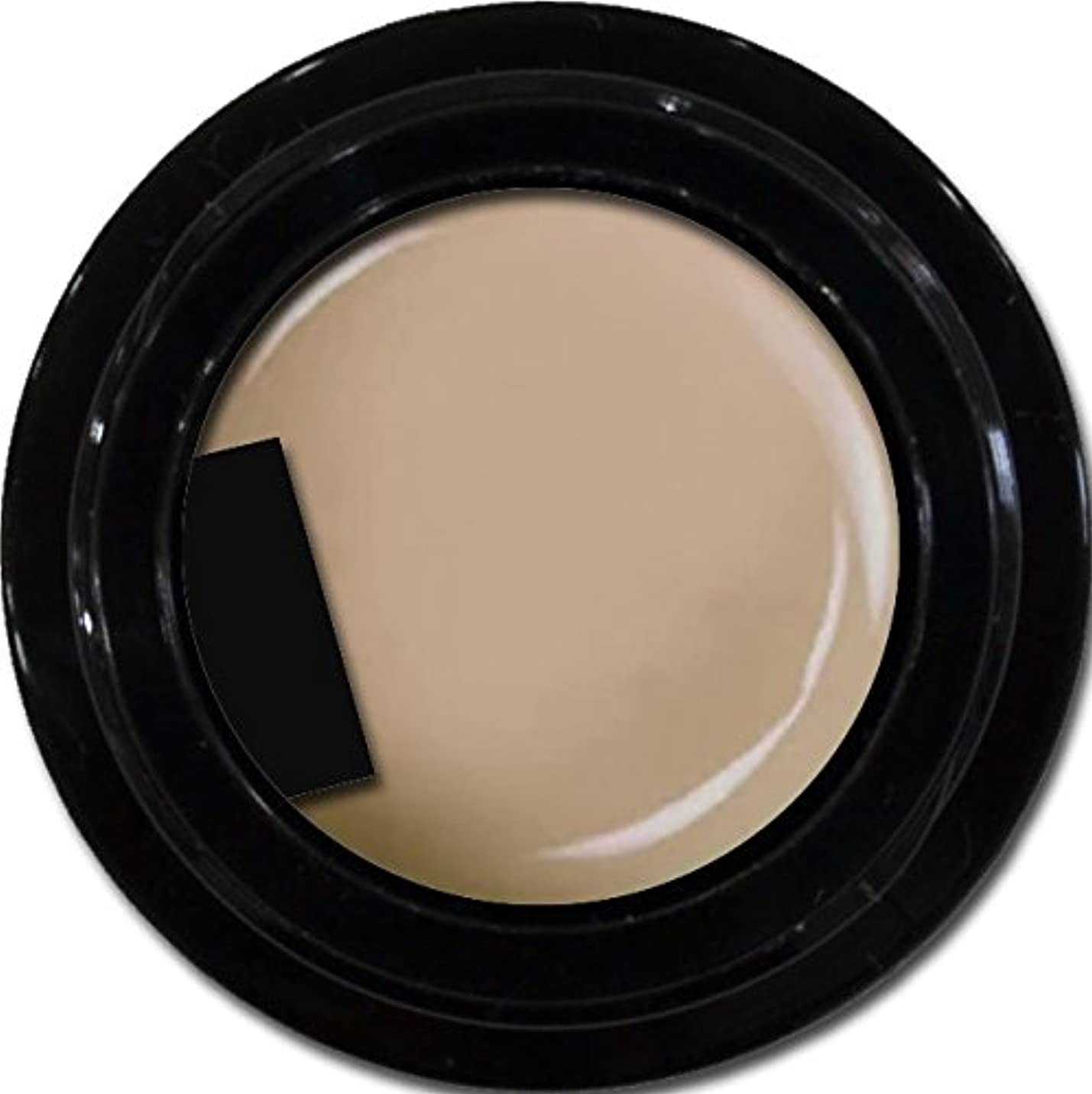 硫黄セクション豆カラージェル enchant gel color gel S102 Dusty Sheer 3g/ エンチャントジェル カラージェル S102ダスティーシアー 3グラム