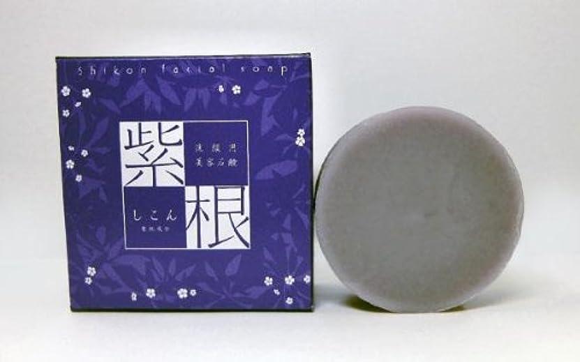 エクスタシー南調査紫根石鹸 100g×5個セット