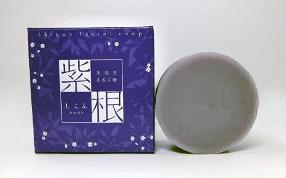 名前を作る落花生アーティキュレーション紫根石鹸 100g×5個セット