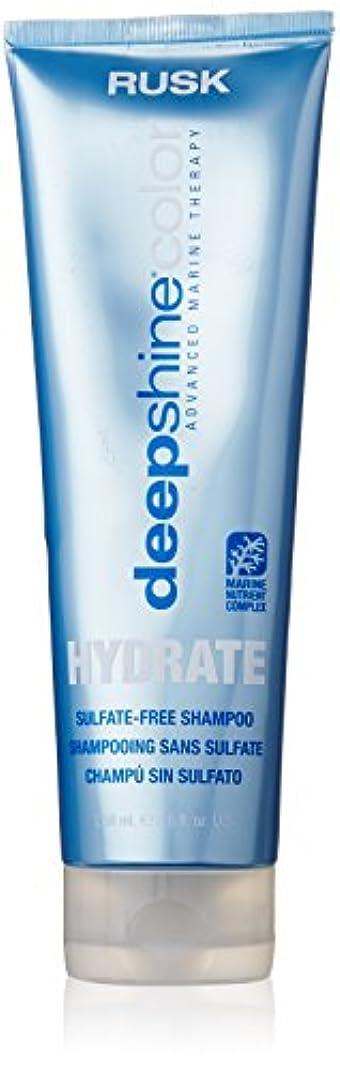 困惑賛辞モートDeepshine Color Hydrate Sulfate-Free Shampoo