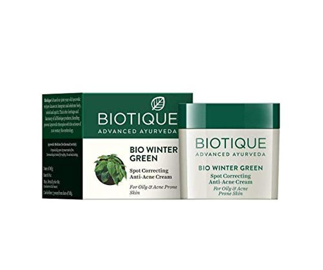 移動するコスチューム不正直Biotique Bio Winter Green Spot Correcting Anti Acne Cream 15g For Oily Skin 油性肌のための抗にきびクリームを修正するBiotiqueバイオ冬の緑の斑点