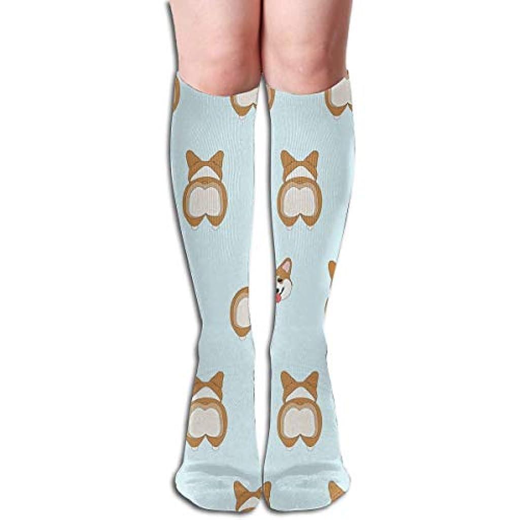 立場マニアックご飯QrriyおかしいCorgi犬は、3 D圧縮靴下、男性女性(20-30 mmHg)のために贈り物を走らせます