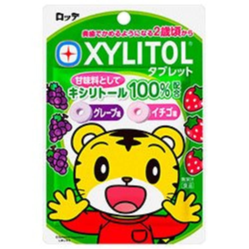 誓約場合ラバロッテ キシリトールタブレット 30g×10袋入×(2ケース)