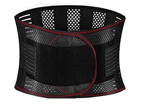 ThankSmile メッシュで快適! 腰コルセット 腰痛サポーター 腰痛コルセット 腰痛ベルト (XL)