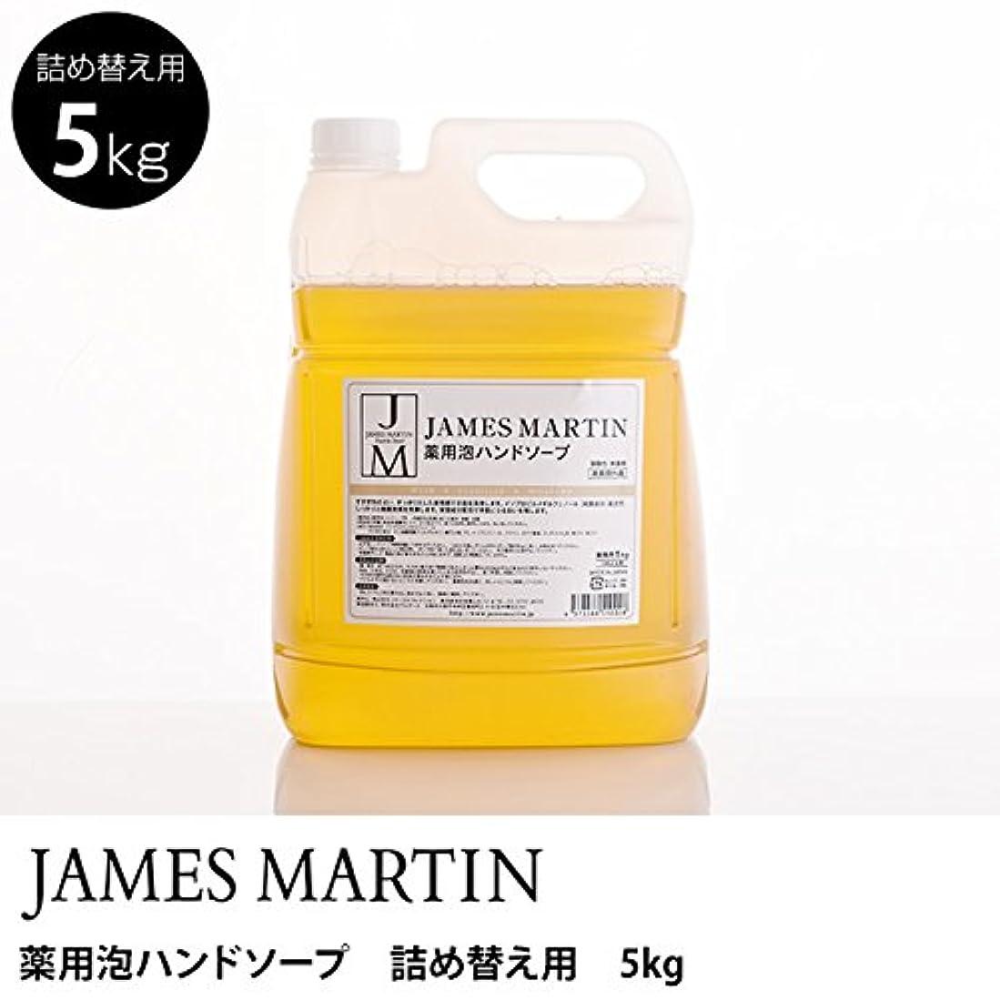石の周り体系的にジェームズマーティン 薬用泡ハンドソープ(無香料) 詰替用 5kg