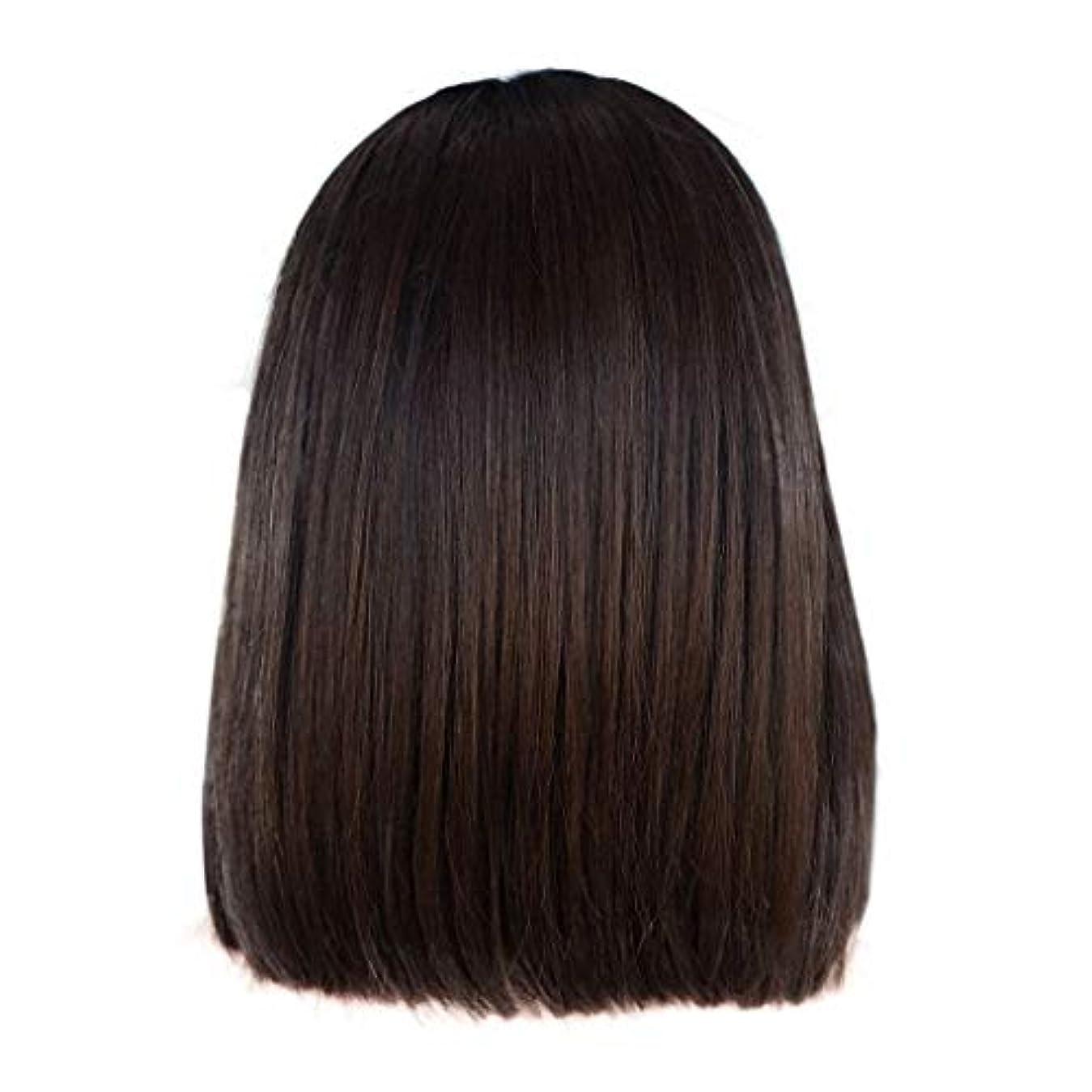 持つ出会い比類なきかつら女性の短いストレートヘアブラウンの化学繊維のフロントレースかつら14インチ