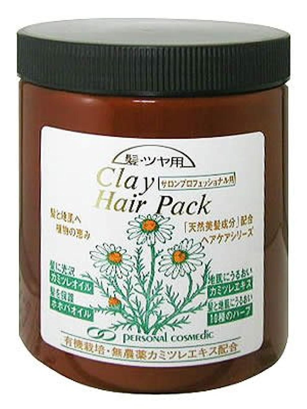 エキサイティングリレーパンPC カミツヤ(髪ツヤ) クレイヘアパック790g
