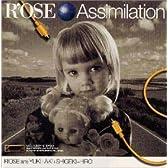 Assimilation(同化、吸収)