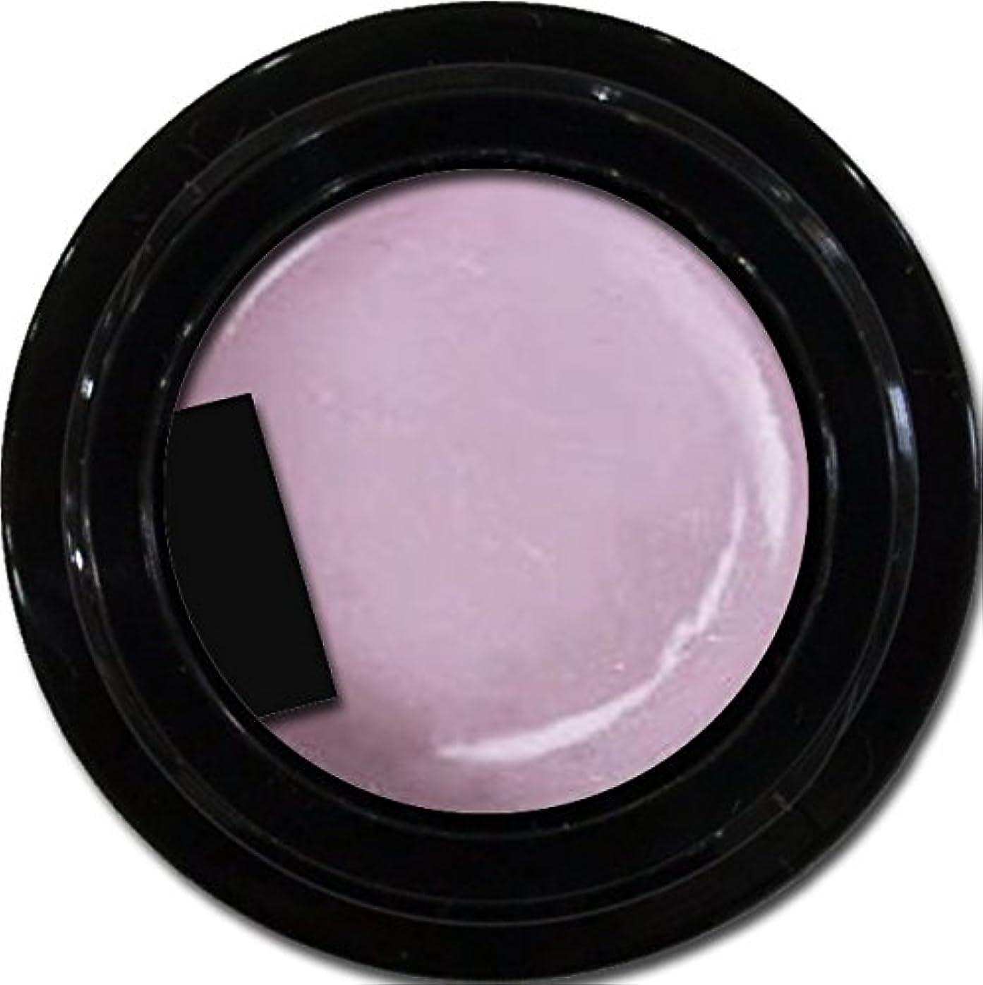 ギャラントリー専ら初心者カラージェル enchant color gel P503 RoyalParty 3g/ パールカラージェル P503ロイヤルパーティー 3グラム