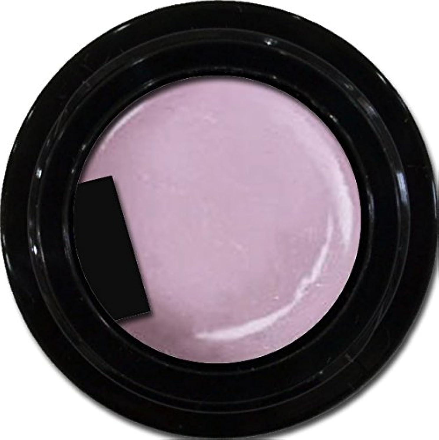 シリーズ癌寄付カラージェル enchant color gel P503 RoyalParty 3g/ パールカラージェル P503ロイヤルパーティー 3グラム