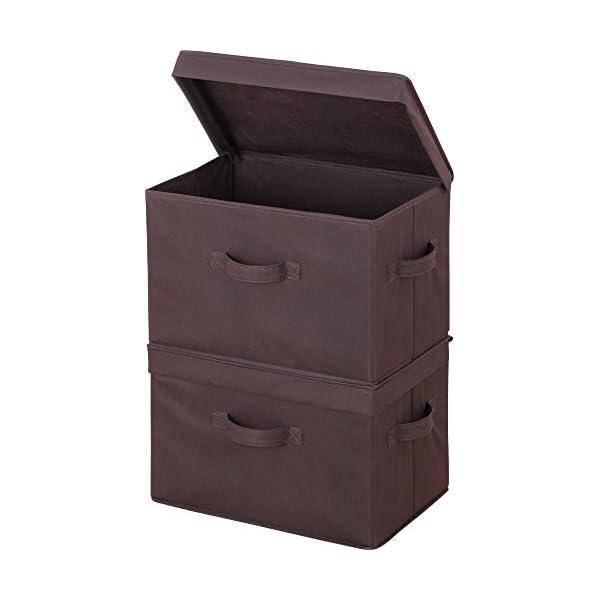 アストロ 収納ボックス 2個組 フタ付き ブラウ...の商品画像