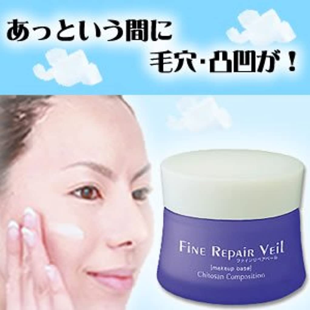 研磨剤サーバ共和国FiNE REPAiR Veil(ファイン リペアベール)