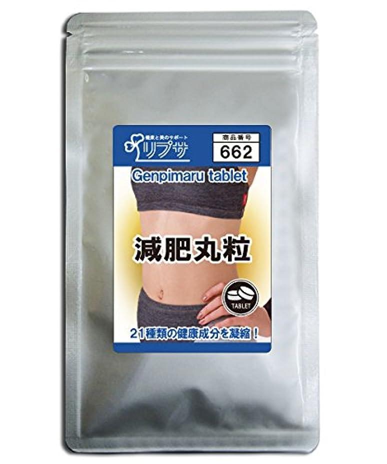 減肥丸粒 約3か月分 T-662