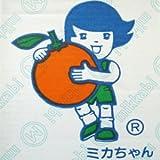 【糖度10度以上】ミカちゃんマークの「静岡:三ケ日青島みかん」 【無印】3Lサイズ 8kg