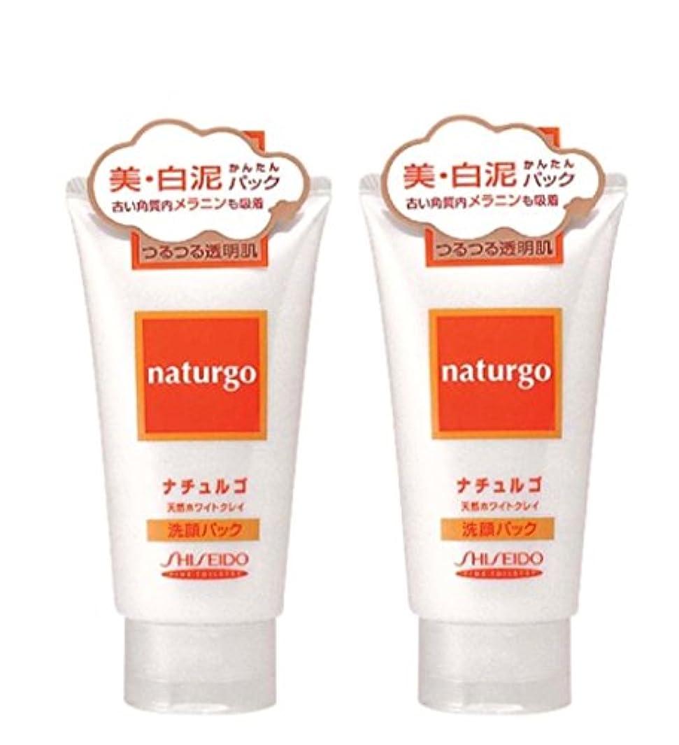 徹底透明に中毒【まとめ買い】ナチュルゴ 天然ホワイトクレイ洗顔パック 120g ×2セット