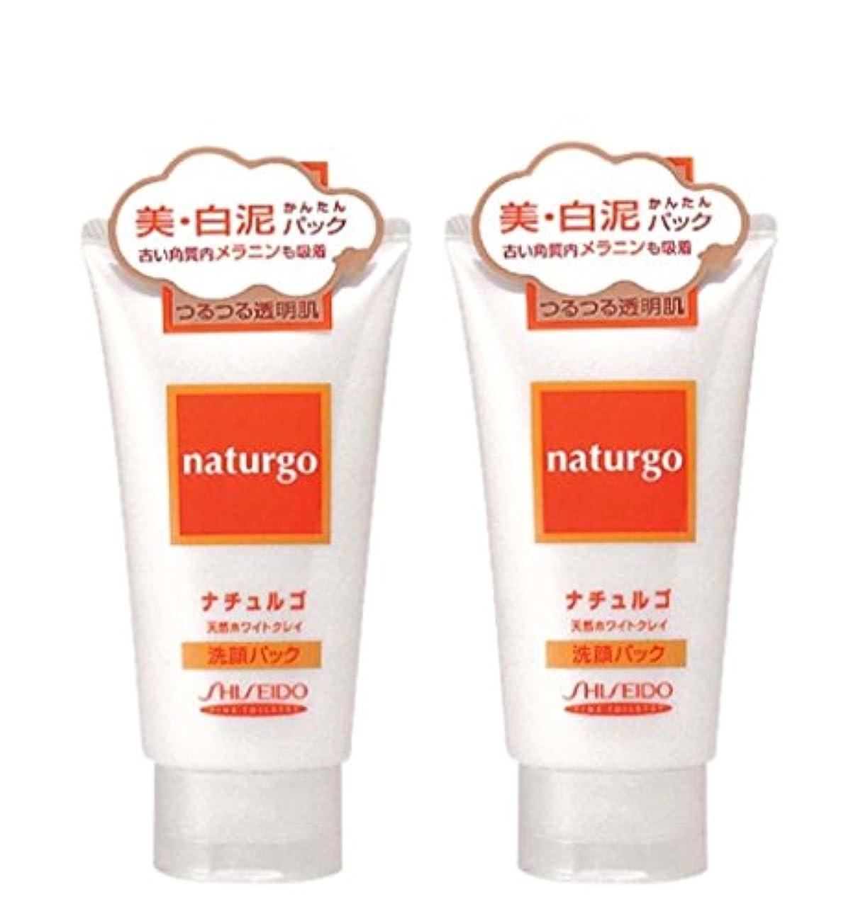 保守的禁止音声【まとめ買い】ナチュルゴ 天然ホワイトクレイ洗顔パック 120g ×2セット