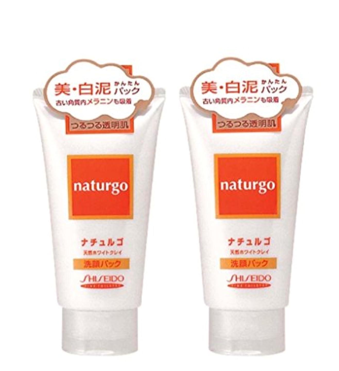 疎外する無視屋内で【まとめ買い】ナチュルゴ 天然ホワイトクレイ洗顔パック 120g ×2セット