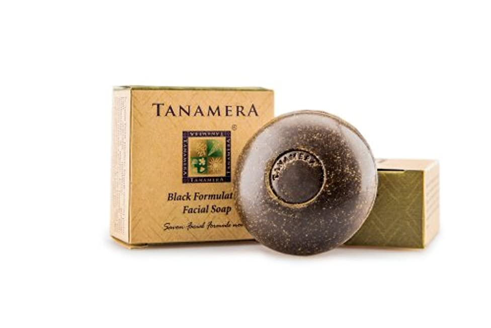印象派失効大気TANAMERA ブラック フェイシャルソープ