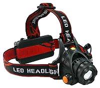 三共コーポレーション ヘッドライト DT-HL-04