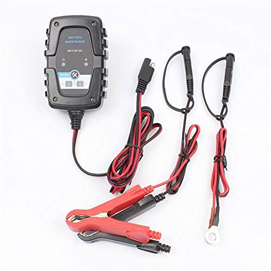 する必要があるソブリケットトピック6V/12V/1A スマート鉛蓄電池充電器 自動スマート充電器 メンテナンス SAEクイックコネクタ 自動車/オートバイ/スクーター用充電器 バッテリー充電器