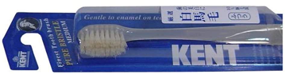 ウェイドカプラー曇ったKENT 白馬毛歯ブラシ コンパクトヘッド ふつう KNT-1232 ×10個セット