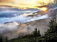 Lais Puzzle 丘の景色の煙の森 1000 部