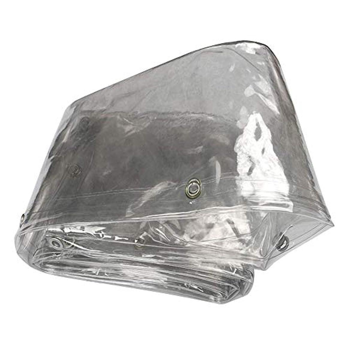 主張するコジオスコ打ち上げるアイレット付き防水シートシート温室防水プールカバーバルコニーブロック雨、クリア、厚さ0.3 mm FENGMIMG (色 : クリア, サイズ さいず : 2.8mx4.8m)