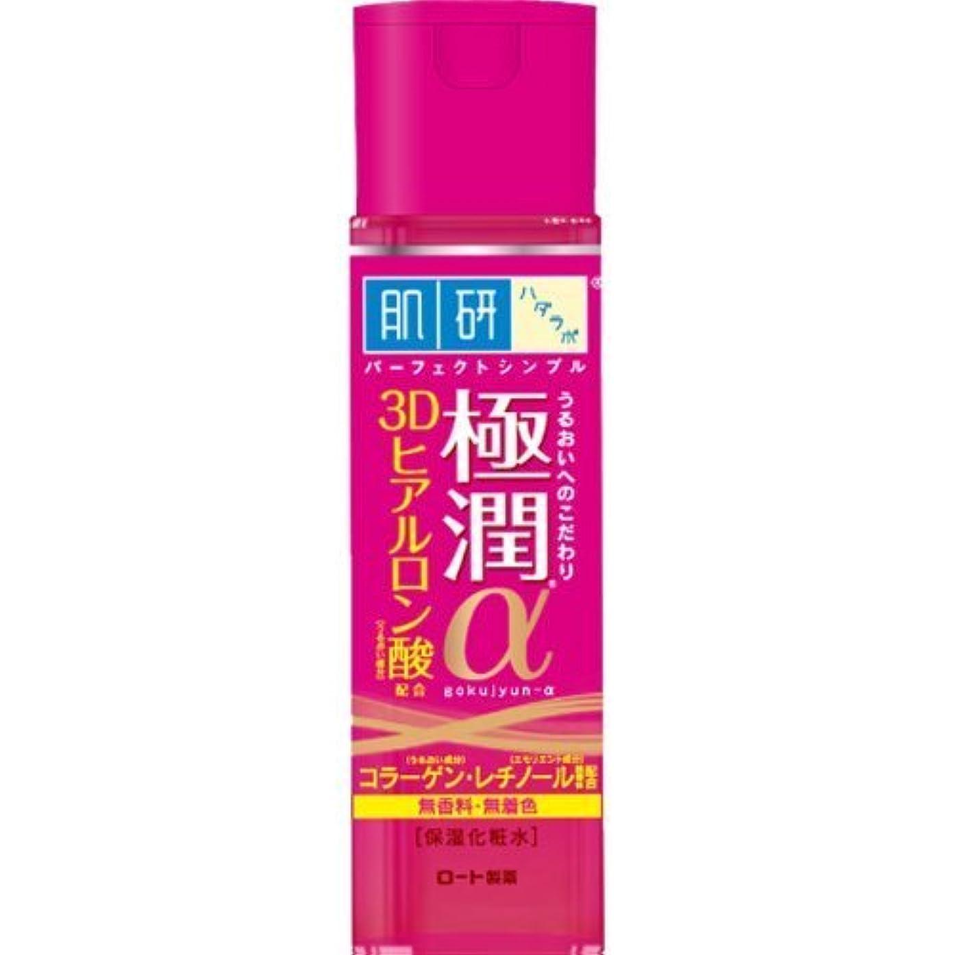 寝室を掃除する恐れビーズ肌研(ハダラボ) 極潤α化粧水 170mL