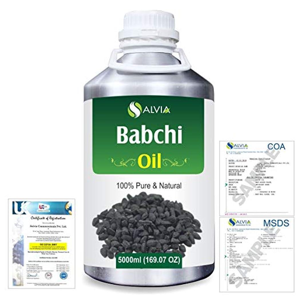 縮れた気づく貪欲Babchi (Psoralea Corylifolia) 100% Pure Natural Oil 5000ml/169 fl.oz.