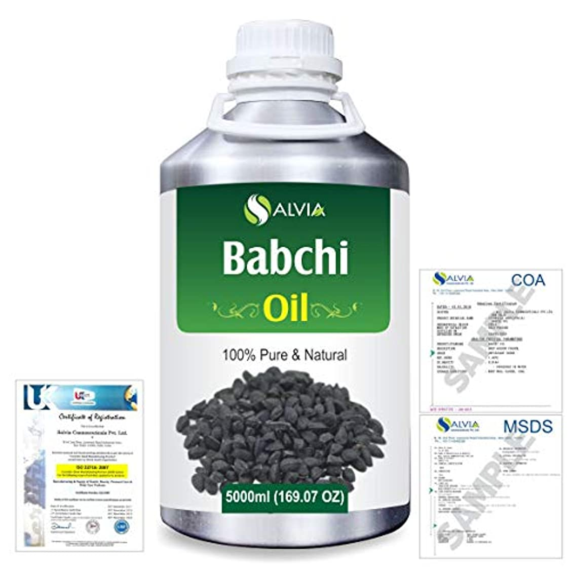 識字スプリット既婚Babchi (Psoralea Corylifolia) 100% Pure Natural Oil 5000ml/169 fl.oz.